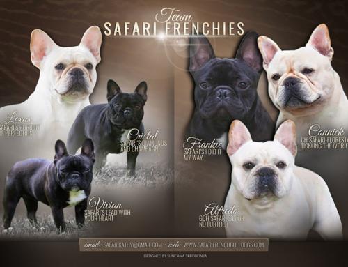 Safari Team inside the Frenchie Fancy Magazine